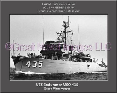 USS Endurance MSO 435 Personalized Photo on Canvas