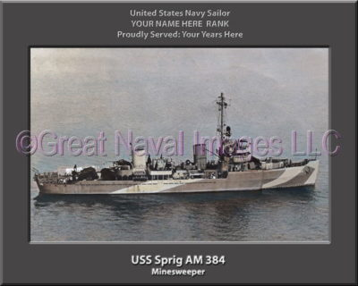 USS Sprig AM 384 Personalized Photo on Canvas